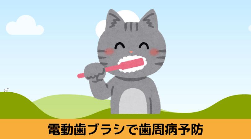 電動歯ブラシで歯をみがくネコ